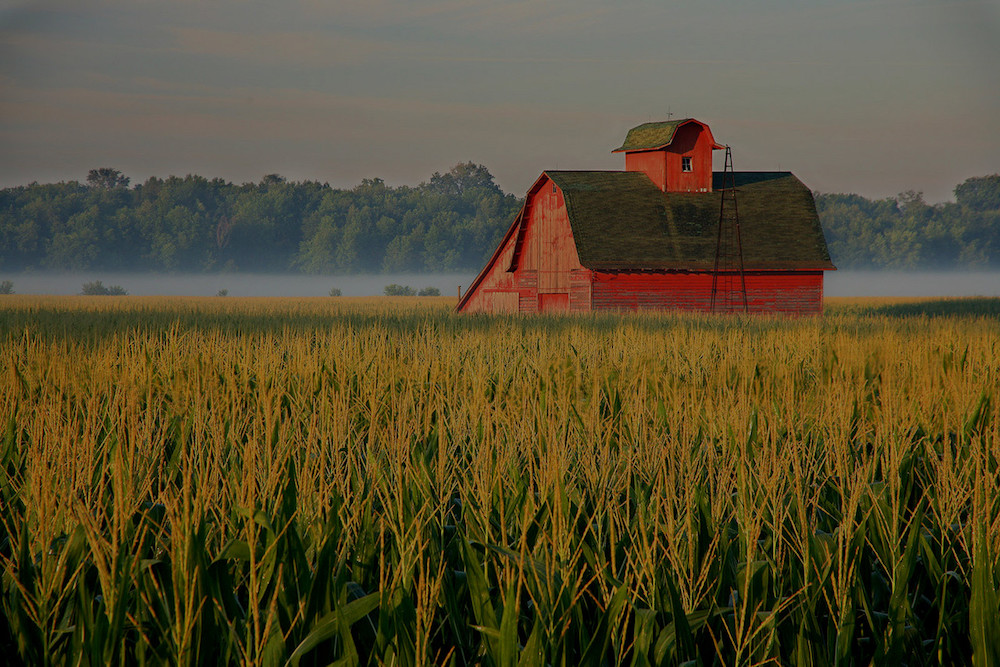 farm and crop insurance Springboro OH